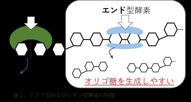 図1.エンド型およびエキソ型酵素の特性