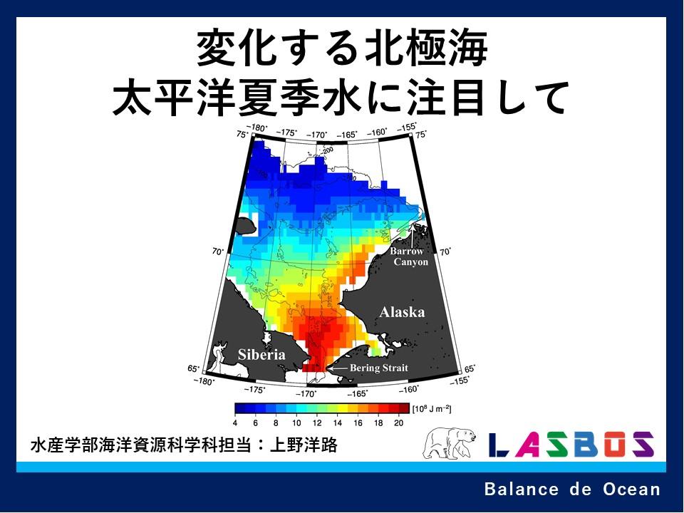 変化する北極海太平洋夏季水に注目して