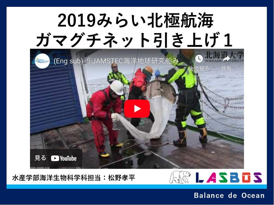 2019みらい北極航海ガマグチネット引き上げ1