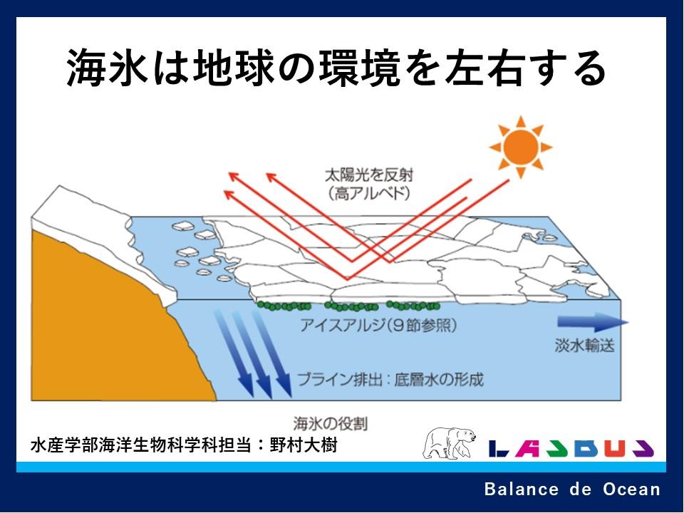 海氷は地球の環境を左右する