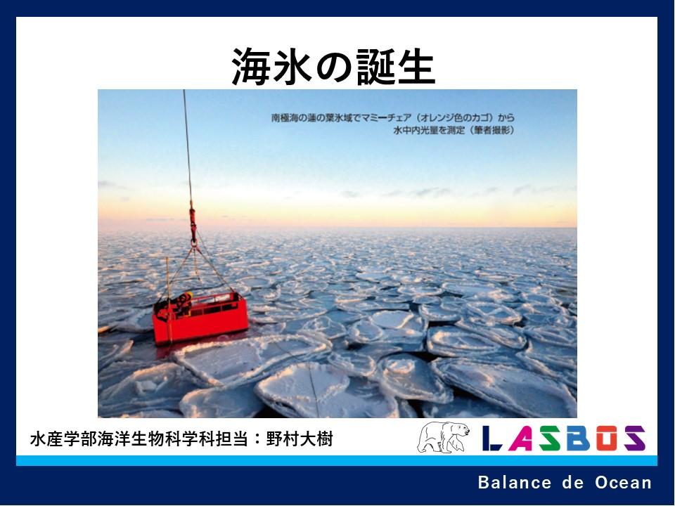海氷の誕生