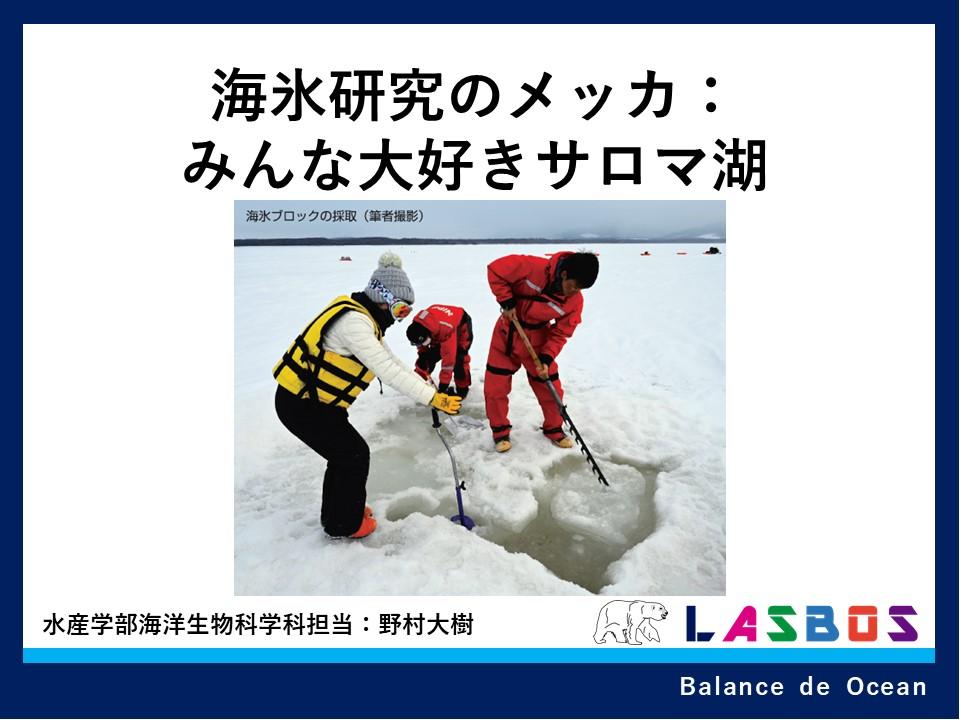 海氷研究のメッカ:みんな大好きサロマ湖
