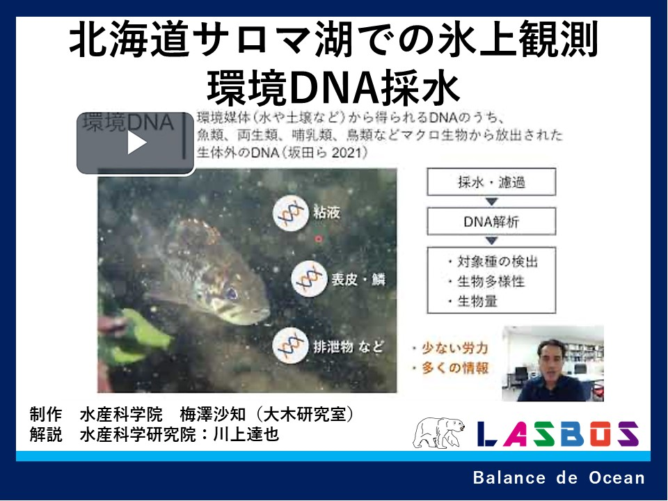 北海道サロマ湖での氷上観測環境DNA採水