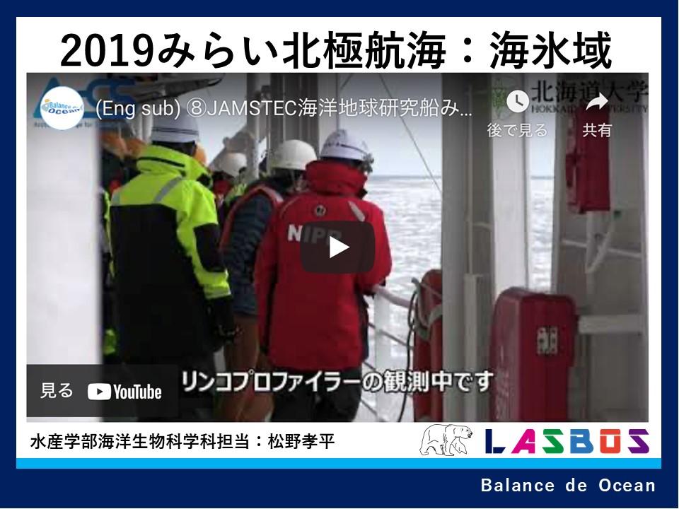 2019みらい北極航海:海氷域