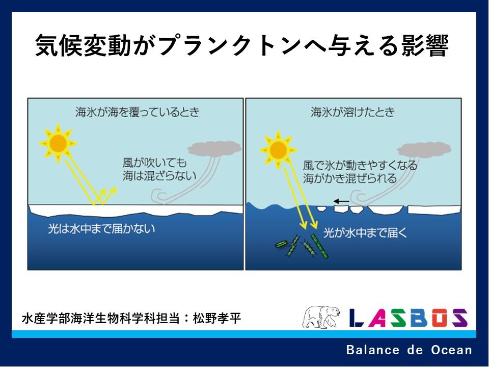 気候変動がプランクトンへ与える影響