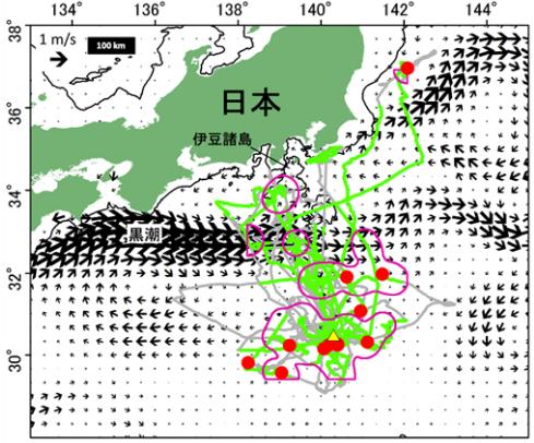 クロアシアホウドリが遭遇した海洋ゴミの分布と採餌海域との関係。