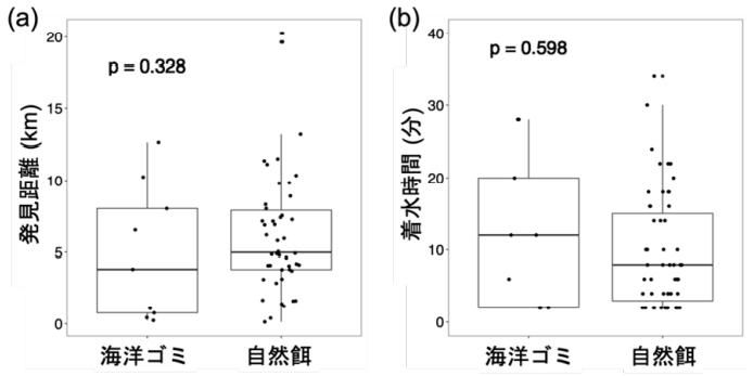 クロアシアホウドリによる海洋ゴミと自然餌(イカや魚類)の発見距離の比較(a)および海洋 ゴミが記録された時の着水時間と自然餌を食べた時の着水時間の比較(b)。