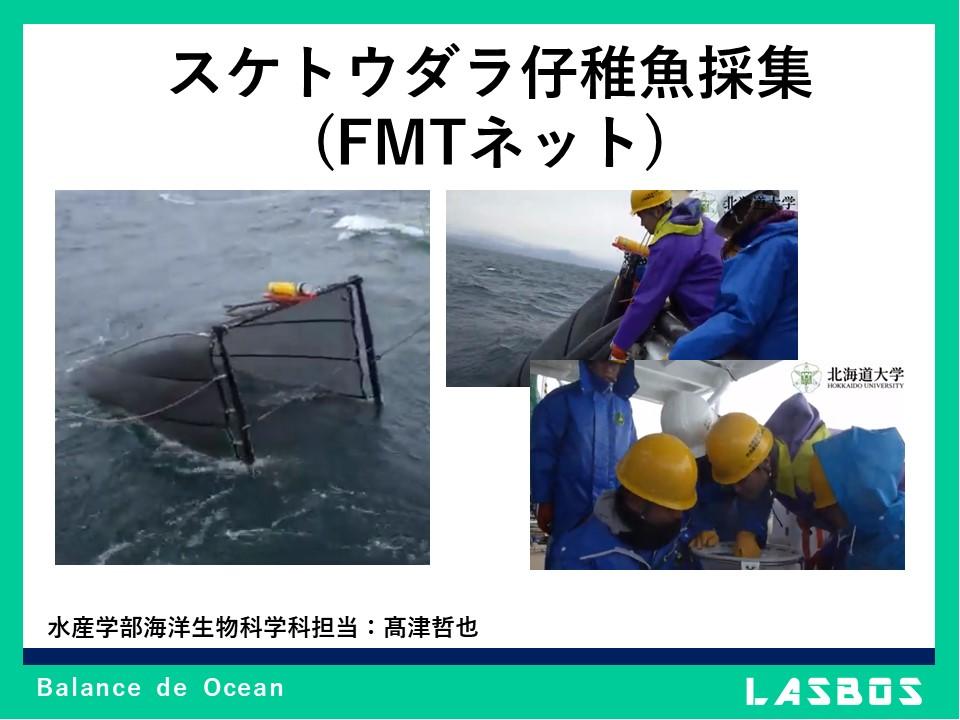 スケトウダラ仔稚魚採集(FMTネット)