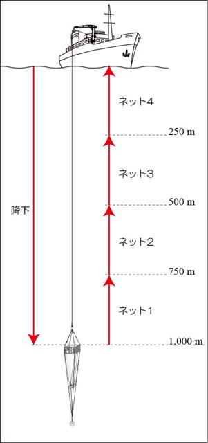 VMPS 曳網例