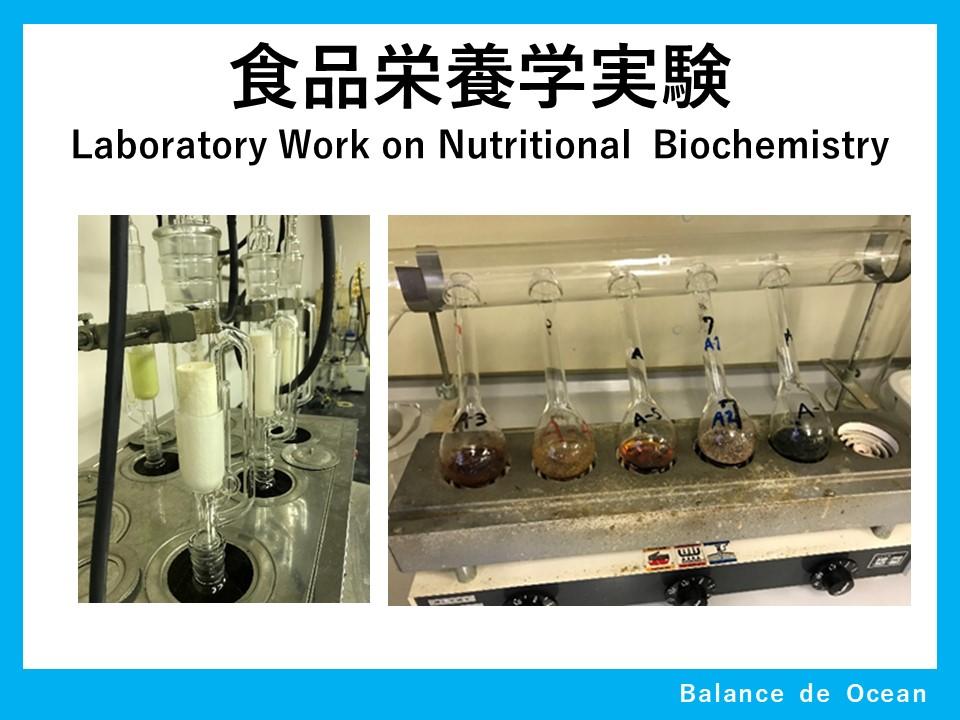 食品栄養学実験