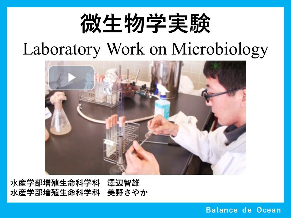 微生物学実験