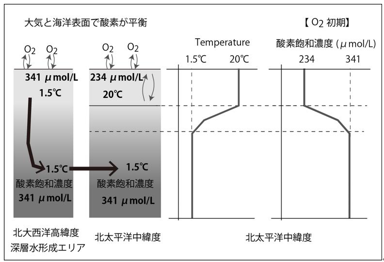 飽和 濃度 酸素