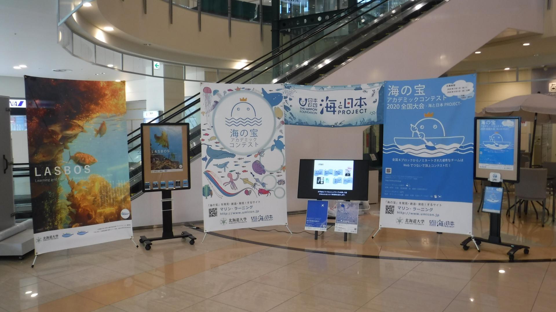 函館空港での展示の様子