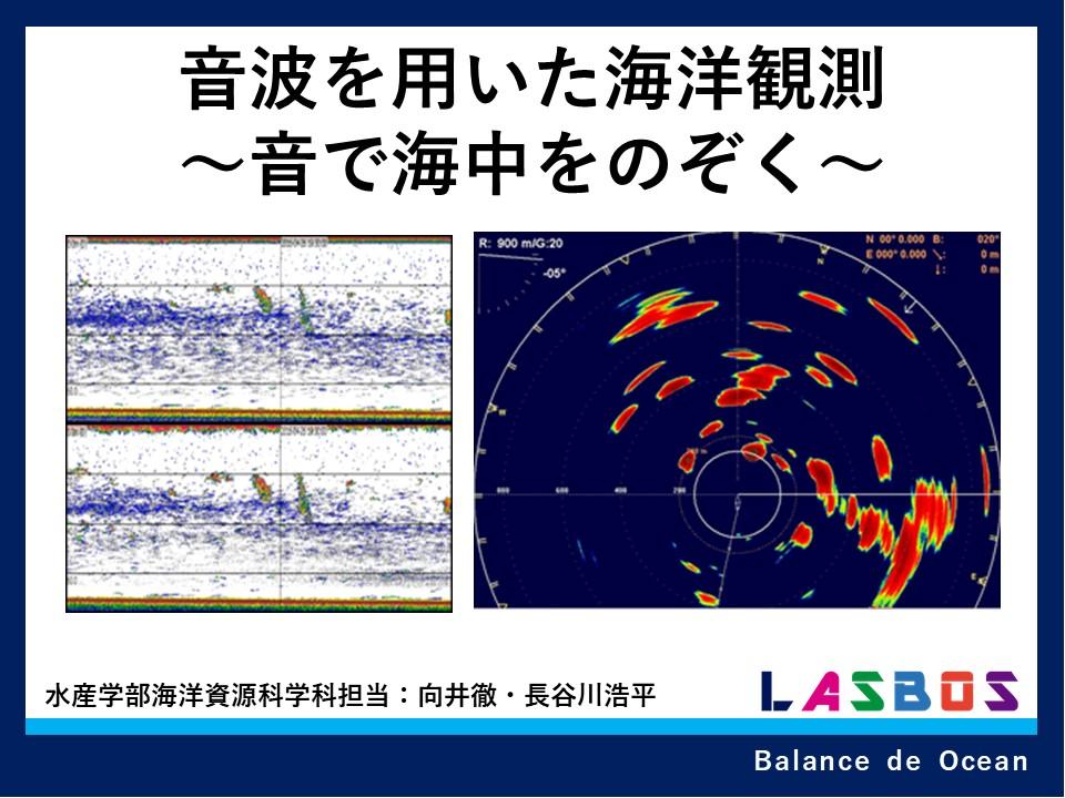 音波を用いた海洋観測~音で海中をのぞく~