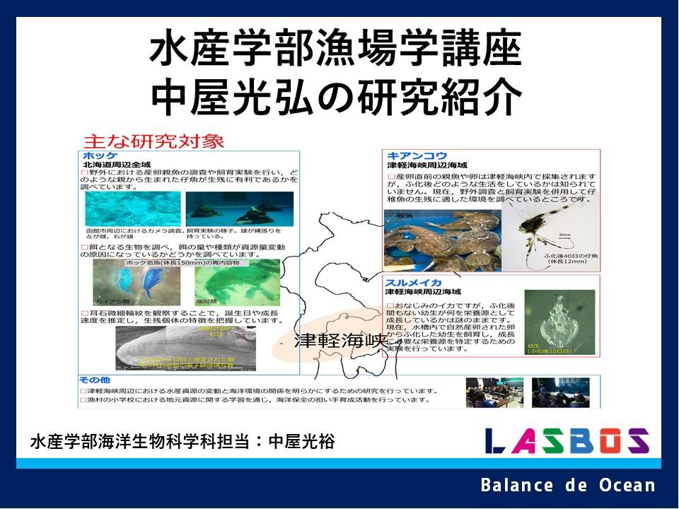水産学部漁場学講座・中屋光弘の研究紹介