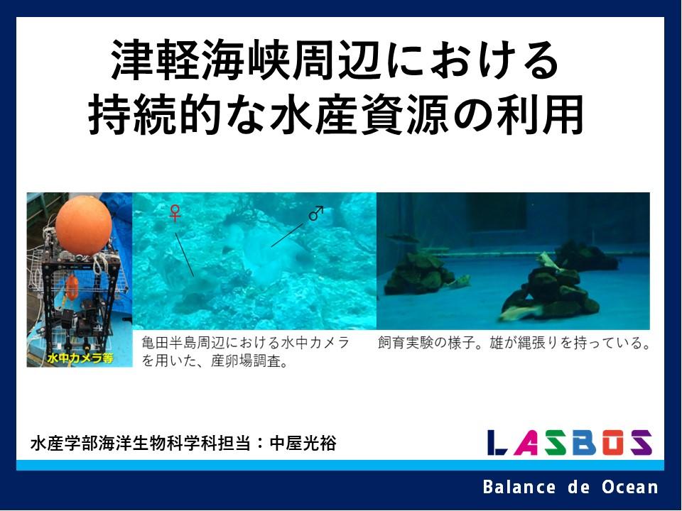 津軽海峡周辺における持続的な水産資源の利用
