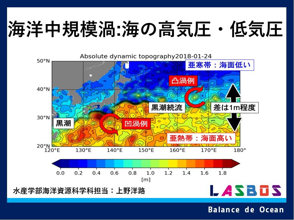 海洋中規模渦:海の高気圧・低気圧