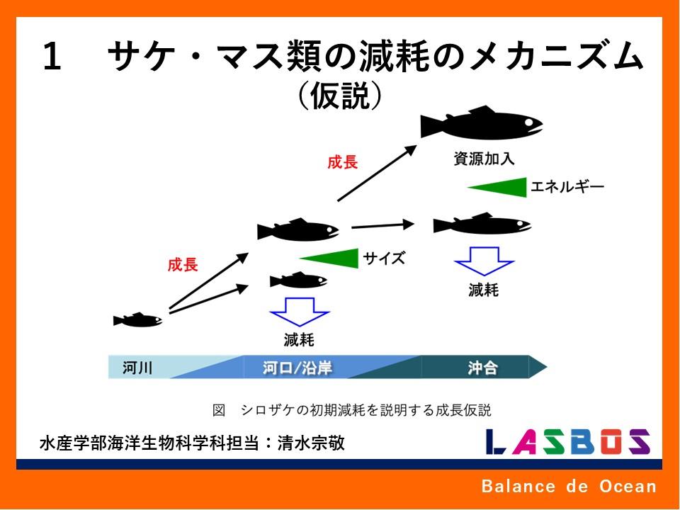 1 サケ・マス類の減耗のメカニズム(仮説)