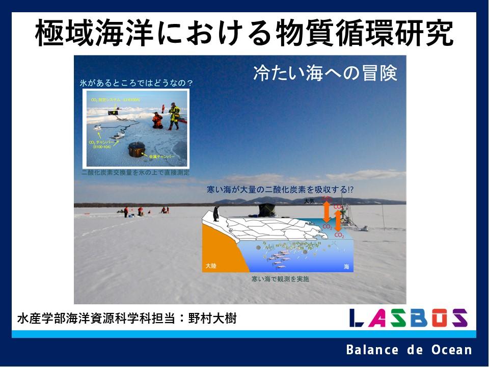 極域海洋における物質循環研究