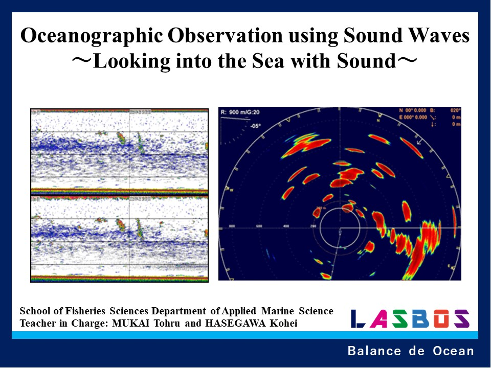 Oceanographic Observation using Sound Waves ~Looking into the Sea with Sound~