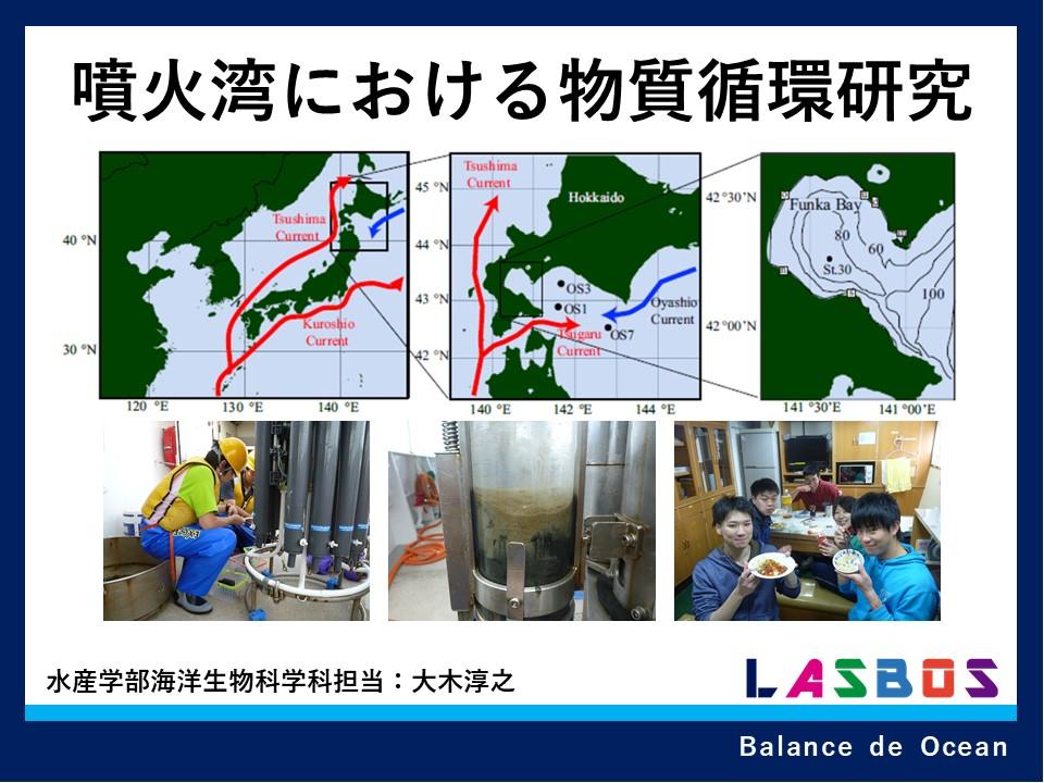 噴火湾における物質循環研究