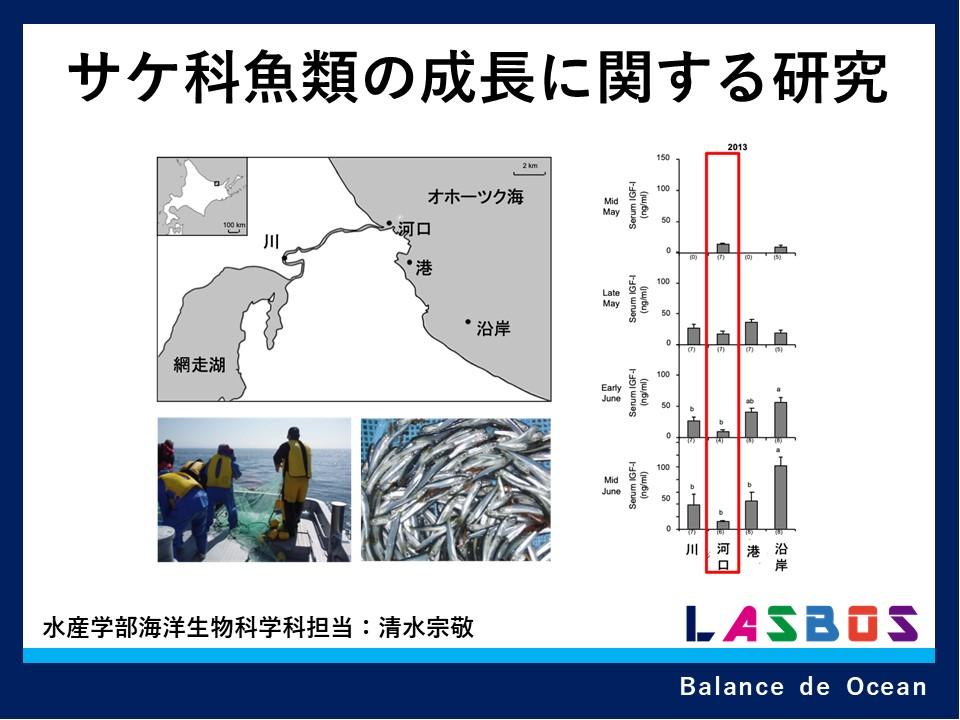 2 サケ科魚類の成長に関する研究