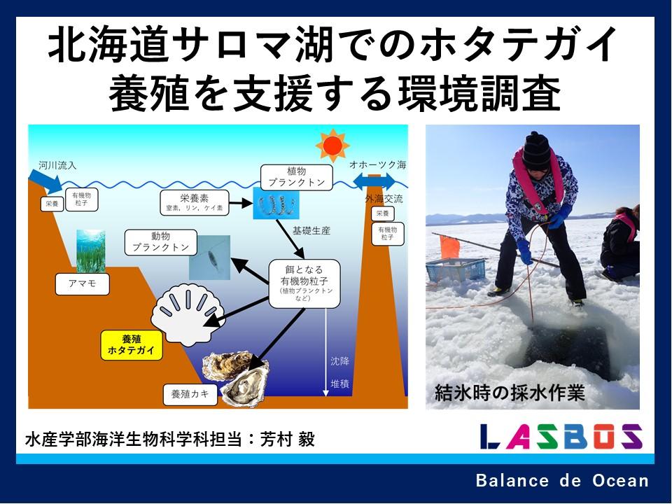北海道サロマ湖でのホタテガイ養殖を支援する環境調査