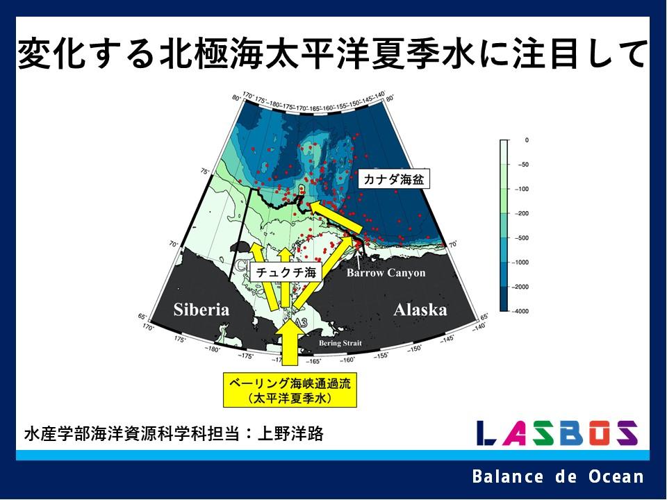 変化する北極海:太平洋夏季水に注目して