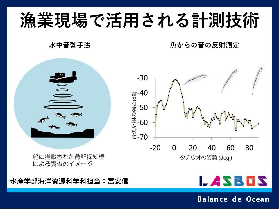 漁業現場で活用される計測技術
