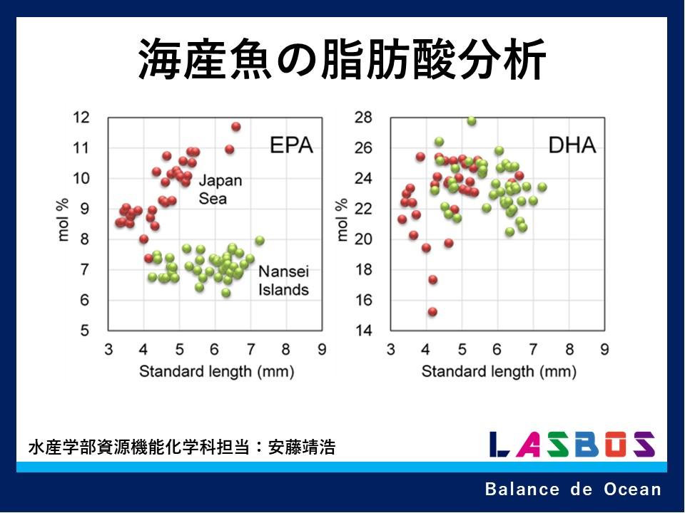 海産魚の脂肪酸分析