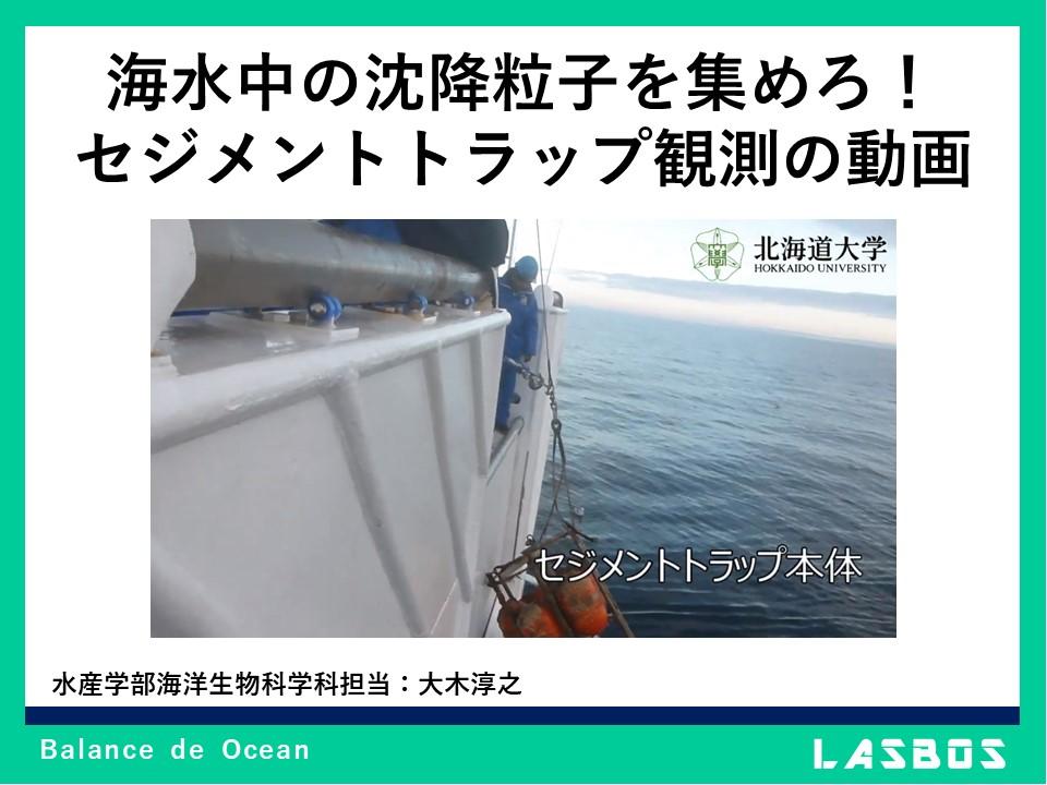 海水中の沈降粒子を集めろ!セジメントトラップ観測の動画