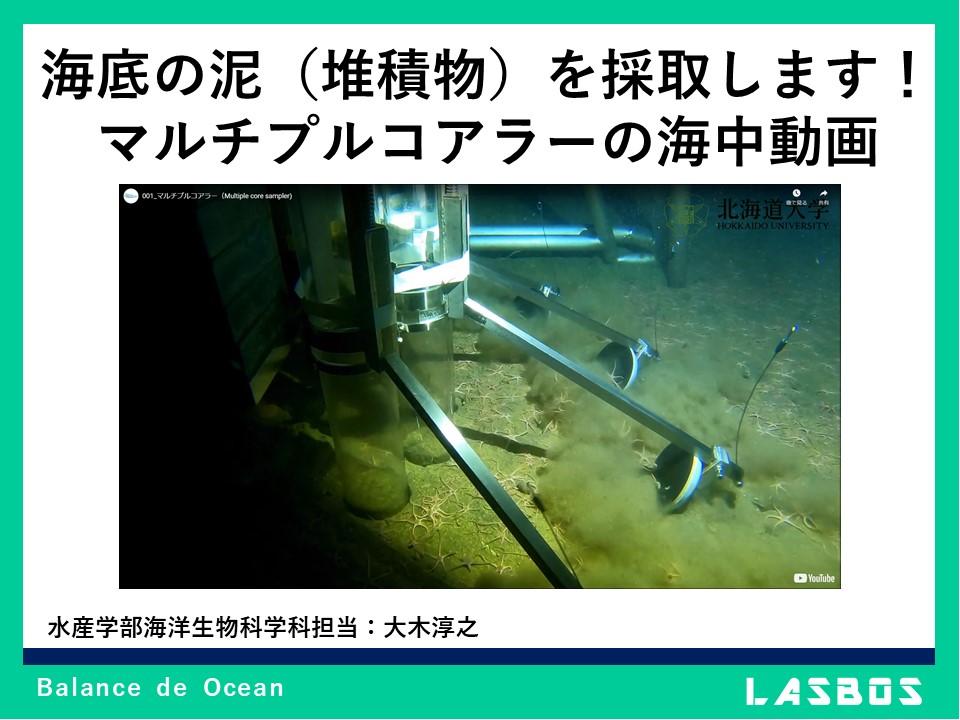 海底の泥(堆積物)を採取します! マルチプルコアラ―の海中動画