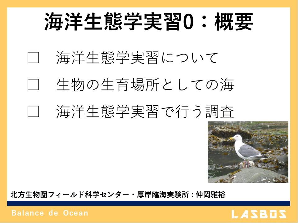 海洋生態学実習 0: 概要