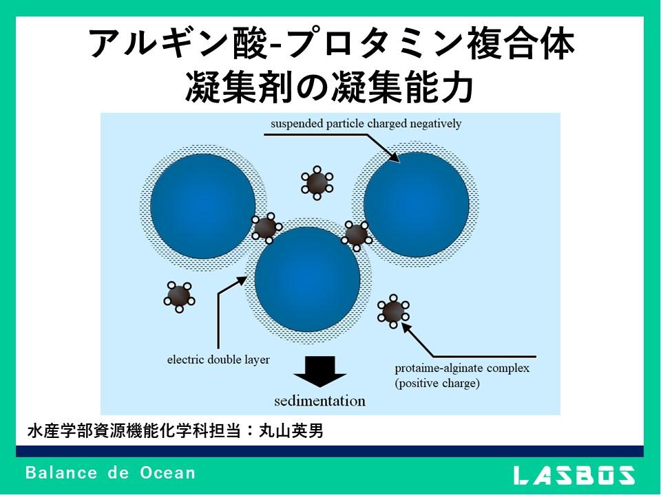 アルギン酸-プロタミン複合体凝集剤の凝集能力