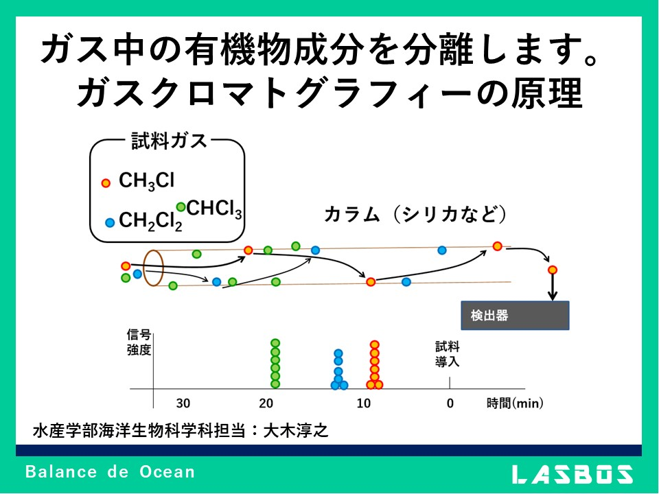 ガス中の有機物成分を分離します。 ガスクロマトグラフィーの原理