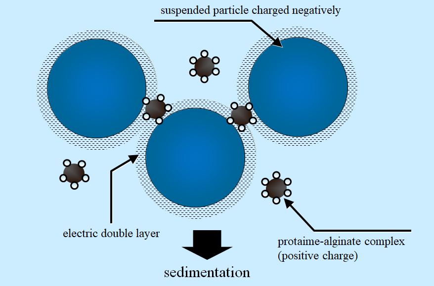 Figure 1   Schematic diagram of electric double layer existing at surface of suspended particle in aqueous environment and th