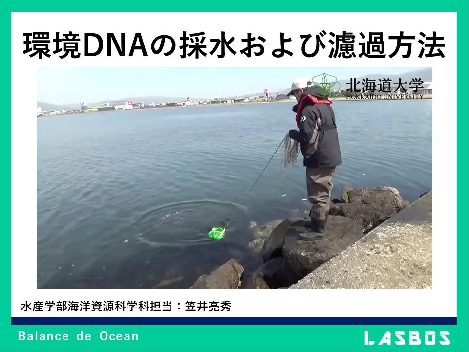 環境DNAの採水および濾過方法