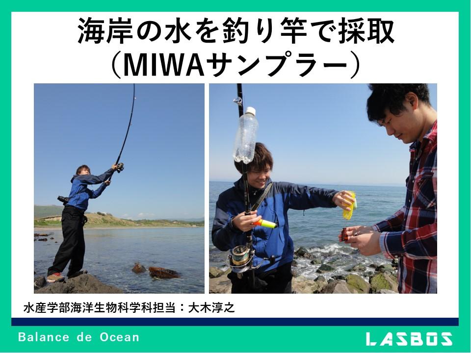海岸の水を釣り竿で採取(MIWAサンプラー)