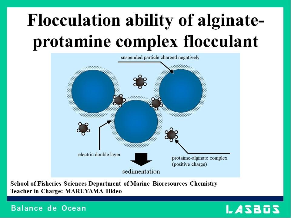 Flocculation ability of alginate-protamine complex flocculant