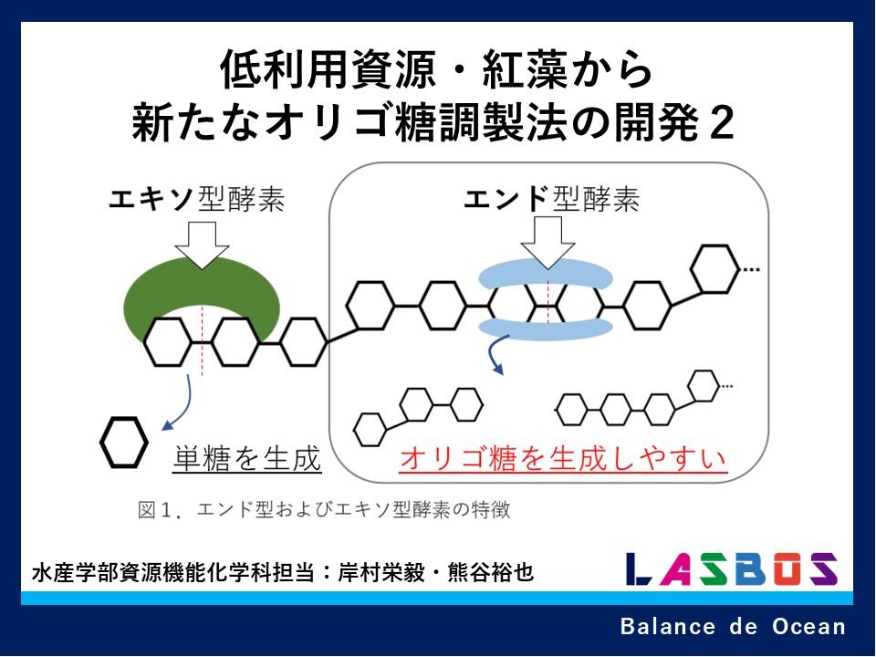 低利用資源・紅藻から新たなオリゴ糖調製法の開発2