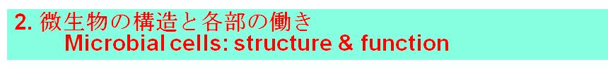 2. 微生物の構造と各部の働き         Microbial cells: structure & function