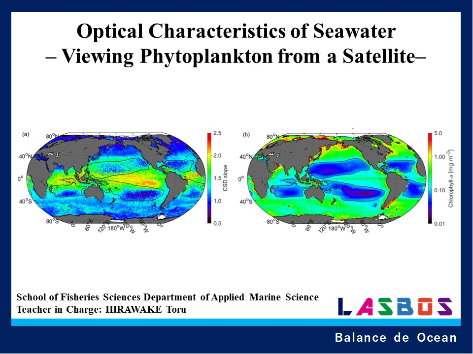 Optical Characteristics of Seawater – Viewing Phytoplankton from a Satellite–