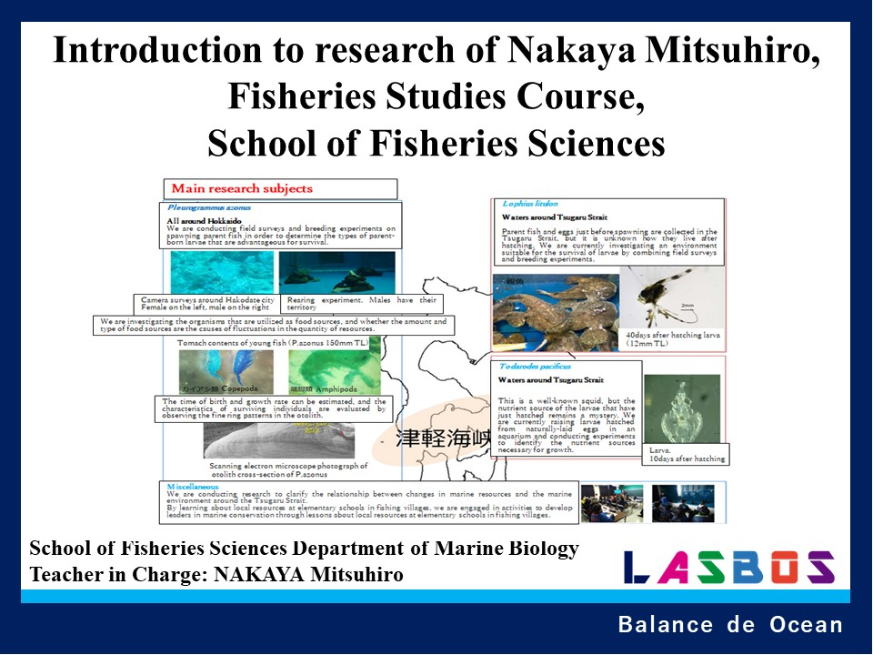 Introduction to research of Nakaya Mitsuhiro, Fisheries Studies Course, School of Fisheries Sciences